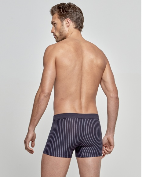 Boxer Stripes - Cotton Stretch
